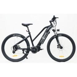 Cycle Denis VTT Rider